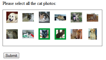 cat captcha