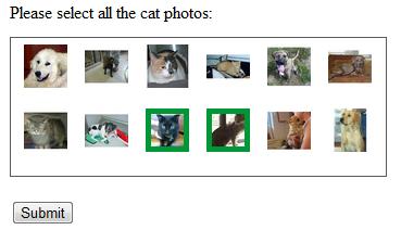 cat captcha